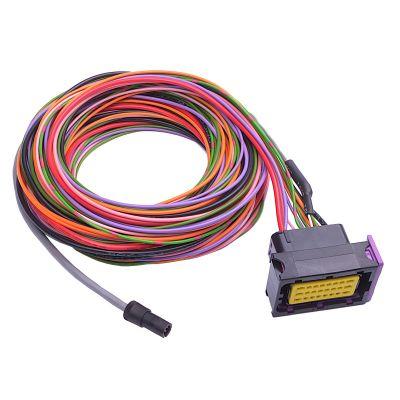 KMS ETC basic wiring loom